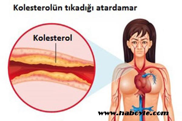 Kolesterolü Düşürmenin Doğal Yolu Var mı?
