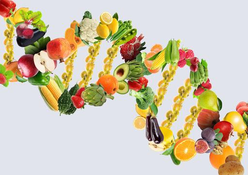 Genler ve Beslenme İlişkisi Nedir?