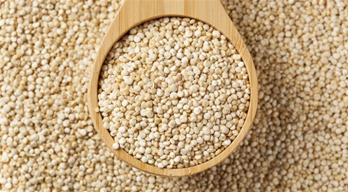protein kaynağı kinoa, kinoanın faydaları, kinoa nelere fayda sağlar